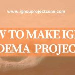 HOW TO WRITE IGNOU PGDEMA PROJECT REPORT?
